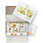 Dr. Hauschka Clarifying Face Care Kit - New