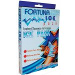 Fortuna First Aid Essentials instant ice pack