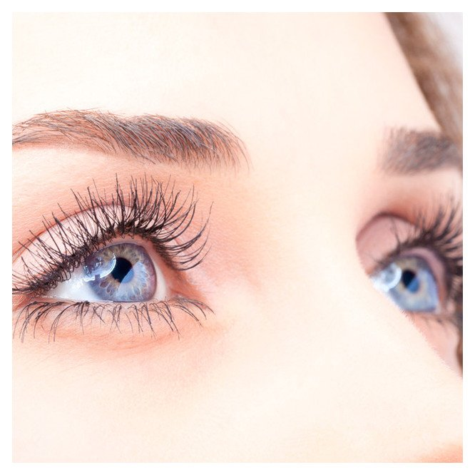 Tint - Eyelash & Brow - Islington skin clinic
